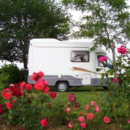 Les emplacements peuvent accueillir des camping-cars